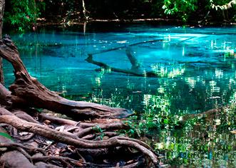Emerald Pool, Blue Pool