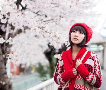 Ханами или Вслед за цветущей сакурой